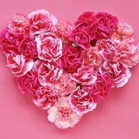風水的なピンク色の意味・効果とは??効果を最大限に活用する方法