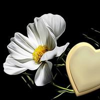 諦めるべきなの?子連れ再婚が難しい理由と対処法