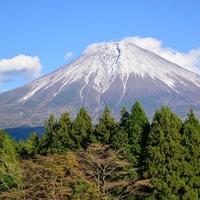 静岡県で当たると評判の占い館・占い師を調査!おすすめ13選
