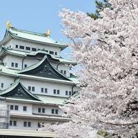 【2020年版】名古屋で当たるおすすめ占い師・霊能者10選