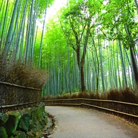 開運の予感?京都、嵐山にある!おすすめ3大パワースポット特集!