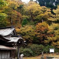 厳選!鳥取県で本格的な姓名判断ができる占い館3選