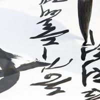 福岡県の当たる姓名判断!おすすめ占い師・占い館5選