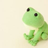 夢に蛙(カエル)がでてきた!吉夢?凶夢?夢占いの意味を解説!