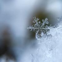 恋をしたくなる?冬が寂しいと感じる理由とは…