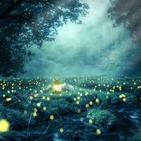 東洋と西洋を組み合わせた総合鑑定が得意な岡山県の占星術師…オオタ☆ヒロユキさん