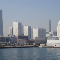 新横浜で当たる占いがしたいなら!おすすめの占い館&占い師