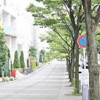 [口コミ付き]横浜の港北でよく当たる!占い師・霊能者