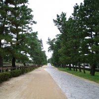 埼玉県 草加で当たる占いがしたい!おすすめの占い館&占い師
