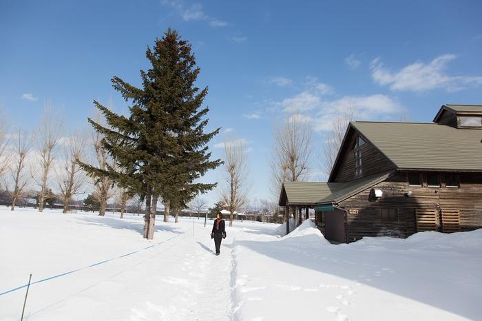 【北海道】苫小牧・札幌で当たる占いがしたい!おすすめの占い館&占い師
