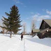 北海道・苫小牧で当たる占いがしたい!おすすめの占い館&占い師