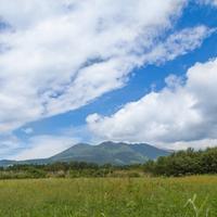 栃木県・那須塩原に来たら行きたい!当たる占い師&占い館