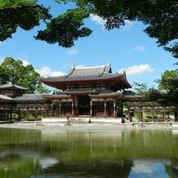 京都で本当に評判が高い!占いの館&占い師5選