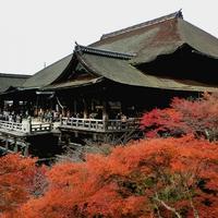 京都の人気パワースポット!! 清水寺の効果&口コミ