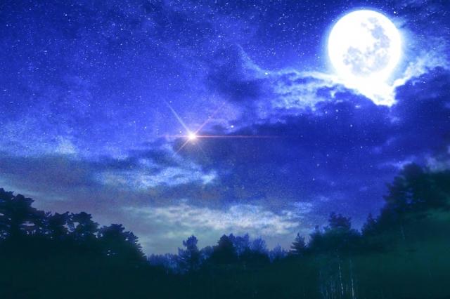 遠方から来る人も!?千葉県の当たる有名占い館『青い月』の口コミ