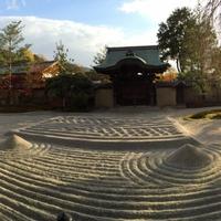 京都のパワースポット!! 高台寺のご利益・効果・口コミ
