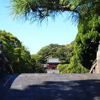 タロット占いが人気の鎌倉にある占い館『マジカルアーマ』の魅力と口コミ