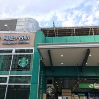 東京 阿佐ヶ谷にある占い館『ウラナイ トナカイ』の特徴&人気占い師