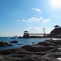 埼玉にある人気パワースポット!神社・寺院5選