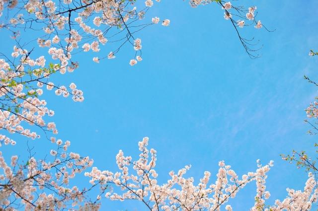 名古屋にある最強パワースポット…熱田神宮の魅力&情報