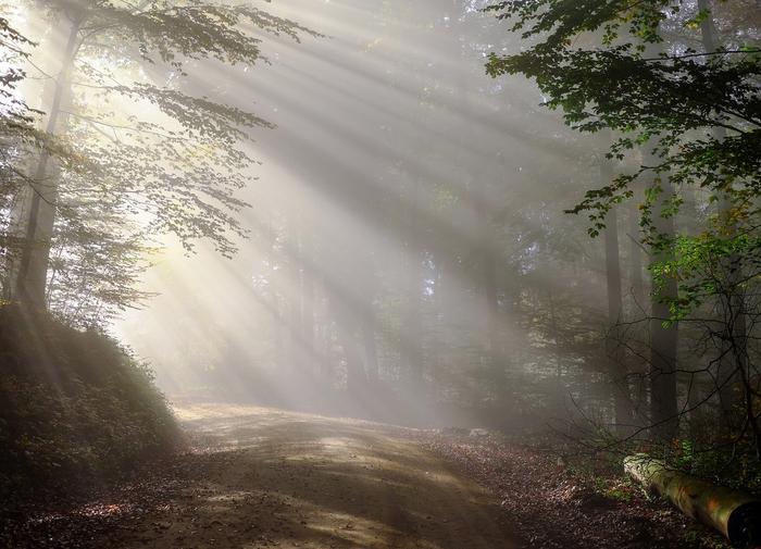 群馬県にあるパワースポット…慈眼院の魅力&情報
