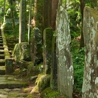 木の神様がいる!和歌山県にあるパワースポット…伊太祁曽神社