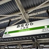 神奈川県小田原市で当たると話題!おすすめの占い師3選