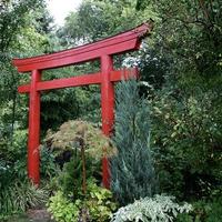 鳥居からパワーを授かろう!奈良のパワースポット…石上神宮とは
