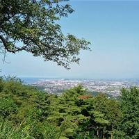 恋愛成就で大人気!新潟にあるパワースポット…居多神社 の魅力