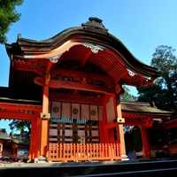 大分の人気パワースポット…宇佐神宮の魅力とご利益