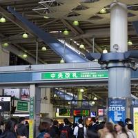 龍に会える東京のパワースポット…荏原神社の魅力とご利益