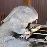 浦和にある兎だらけのパワースポット…調神社のご利益&魅力