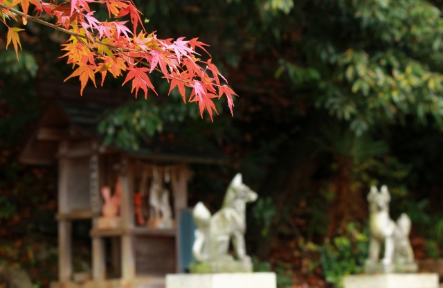 自慢したい!御朱印がかわいい東京の寺院・神社まとめ