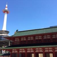京都で恋愛占いをするならココ!当たる占い館&占い師