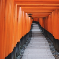 復縁が叶った!関東・関西にある恋愛パワースポット神社