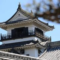 高知県で本当に当たる!おすすめの占い師・霊能者6選