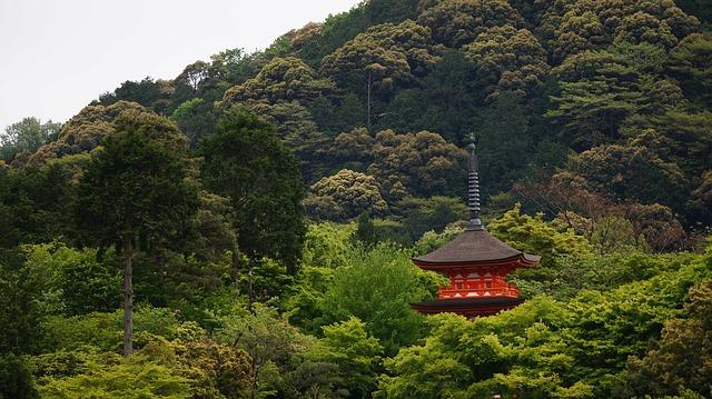 京都で仕事運のご利益がある!強力パワースポット5選