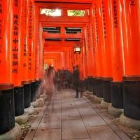京都で金運のご利益がある!強力パワースポット5選