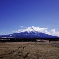夢に富士山がでてきた!!夢占いの意味