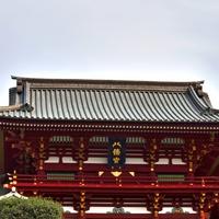 神奈川県のパワースポット!鶴岡八幡宮のご利益&口コミ