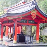 超人気パワースポット!神奈川、箱根神社のご利益は?