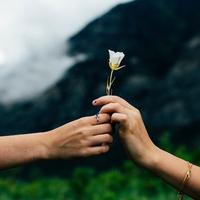 引き寄せの法則で結婚ができる!?成功体験談と結婚する方法