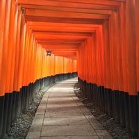 京都の人気パワースポット!伏見稲荷大社のご利益と口コミ