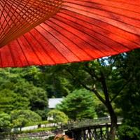 京都の人気パワースポット!出雲大神宮のご利益と口コミ