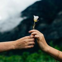結婚後に恋愛感情がなくなる原因とは?ラブラブでいれる方法