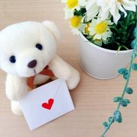 幸せになりたい!同棲、プロポーズ、結婚までの正しい順番って?