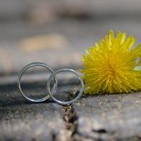 独身で寂しくないけど結婚するべき?独身で幸せになる方法