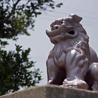 沖縄のパワースポット! ガンガラーの谷のご利益&口コミ