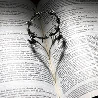 中途半端な気持ちのままは危険?死別再婚が失敗しやすいケース