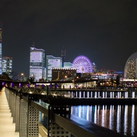 横浜市内で占いをするならココ!口コミで当たるとおすすめな占い師8選